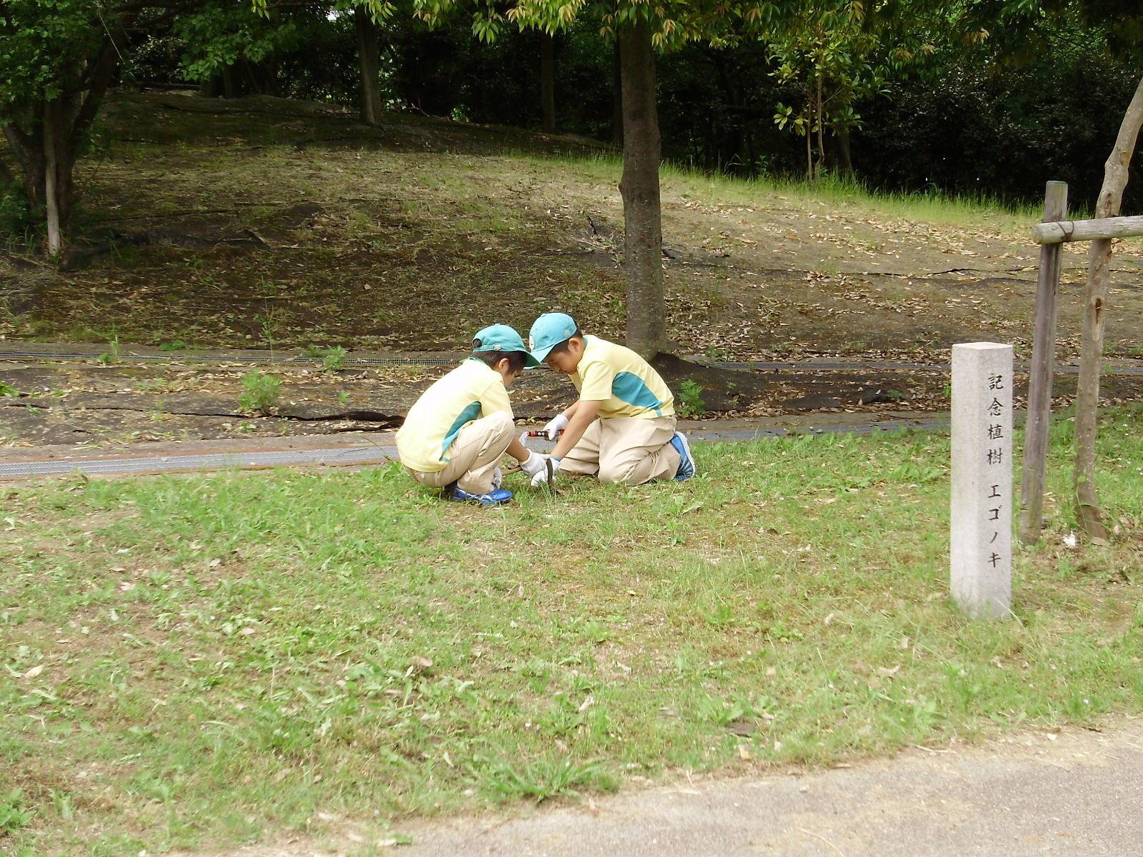 市民の森清掃ボランティア