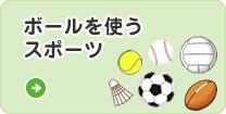 ボールを使うスポーツ